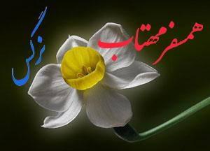 همسفر مهتاب - به روز رسانی :  8:47 ص 98/11/6 عنوان آخرین نوشته : آری با تو ای مادرم…